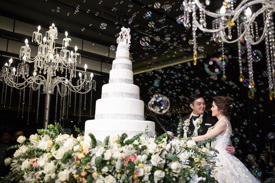 Wedding Reception Cake cutting ceremony